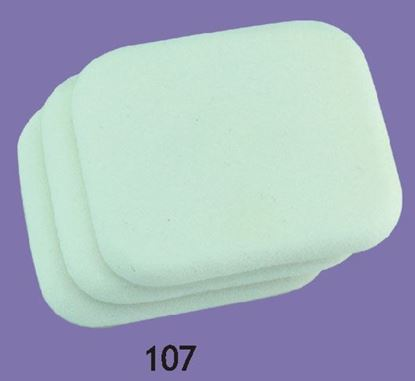 Picture of NBR Sponges(107)